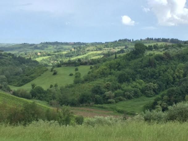 Tuscan hills 1