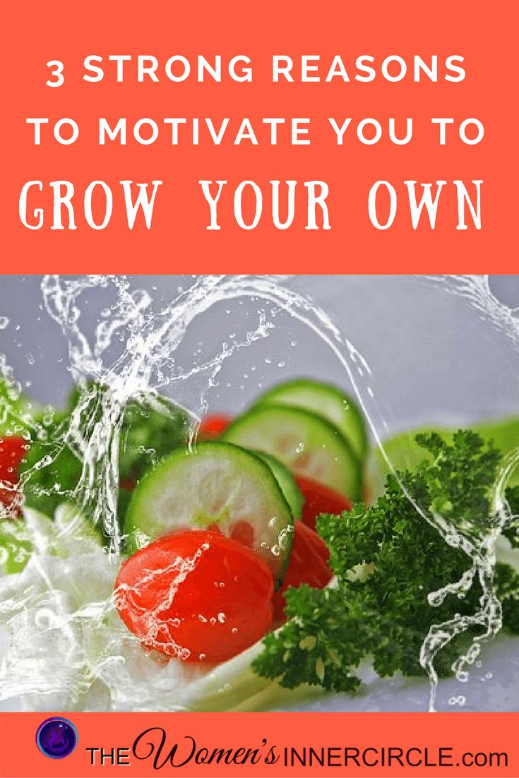 Growing Your Own Salad Ingredients is beneficial for so many reasons. We're giving you a few to get you motivated to start!